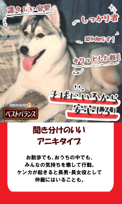 seikaku_shindan-blanca.jpg